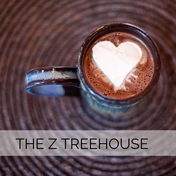 8-portfolio the Z treehouse 2