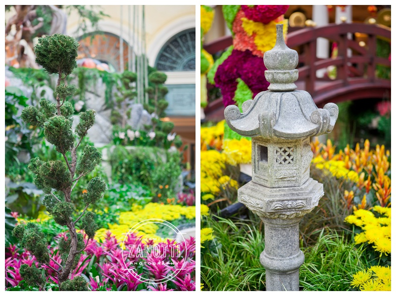 ... Las Vegas The Bellagio Conservatory And Botanical Garden Photographer  Jamie Zanotti 16 ...